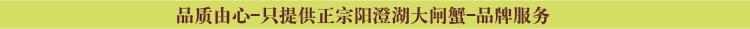 说明: http://www.yangchenghuxie.com/Public/default/home/images/hengtiao5.jpg