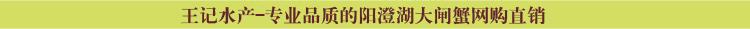 说明: http://www.yangchenghuxie.com/Public/default/home/images/hengtiao4.jpg